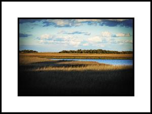 Marshforblog